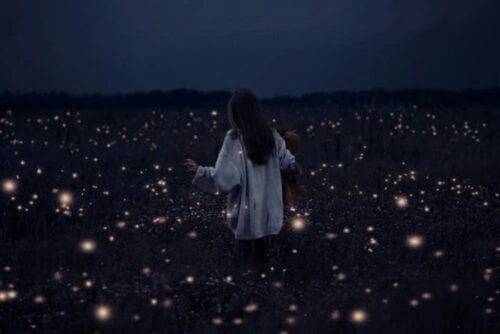 fireflies in a dark field, surrounding a woman, with long dark hair, dressed in an oversized white jumper, and holding a teddy bear