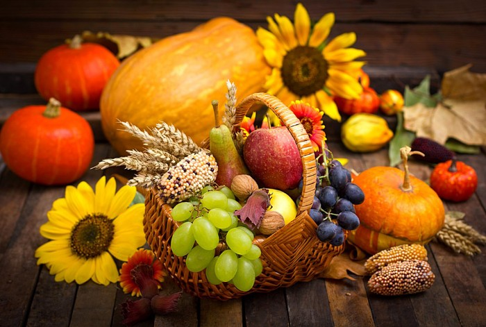 sunflowers and pumpkins, near a rattan basket, filled with fall fruit, dried wheat stalks, an ear of corn, and some walnuts, happy thanksgiving wishes, autumn harvest imagery