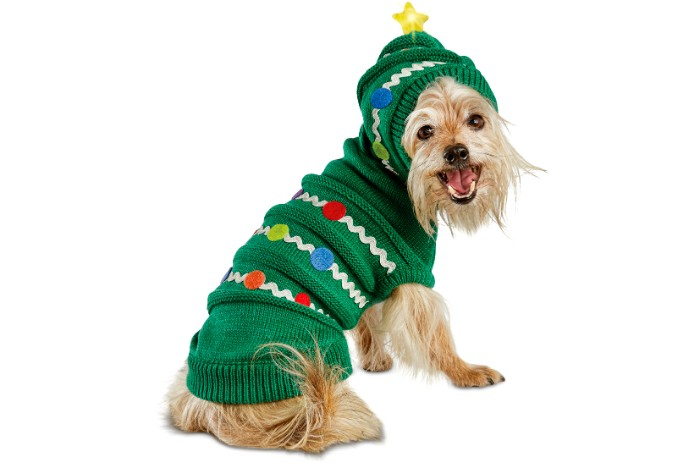 yorkshire terrier sitting, dressed in a green knitted jumper, featuring white and red, blue and yellow motifs, and a hood, decorated with a glowing yellow star, ugly sweater party for dogs
