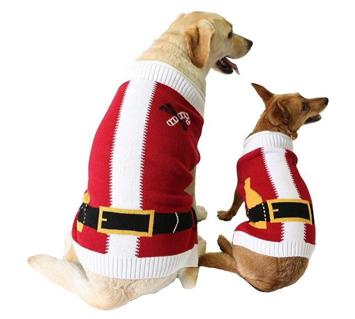 brown dog and a yellow retriever, sitting side by side, wearing identical santa costume jumpers, in red and white