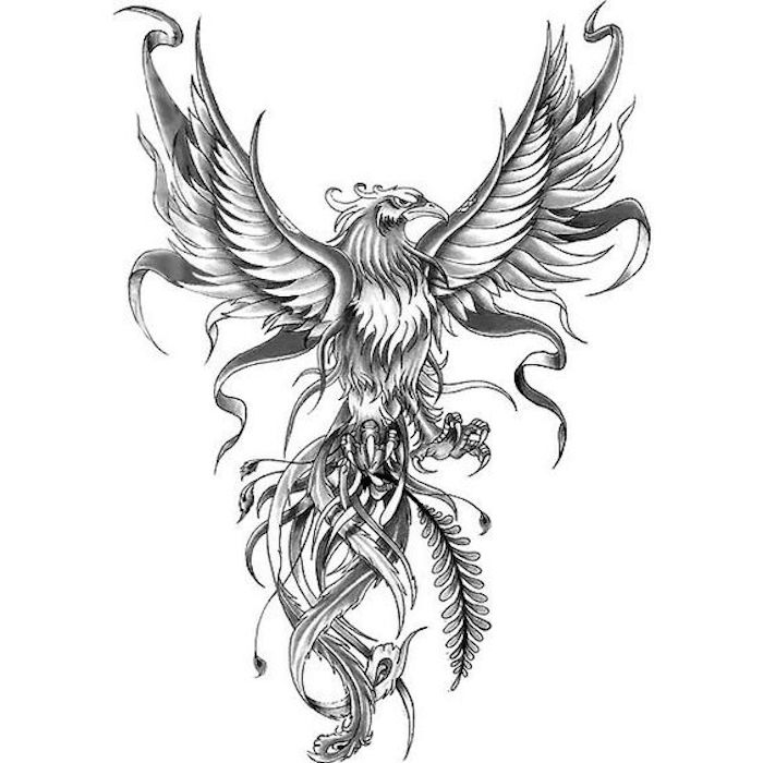 black and white phoenix drawing, tattoo designs for men, white background