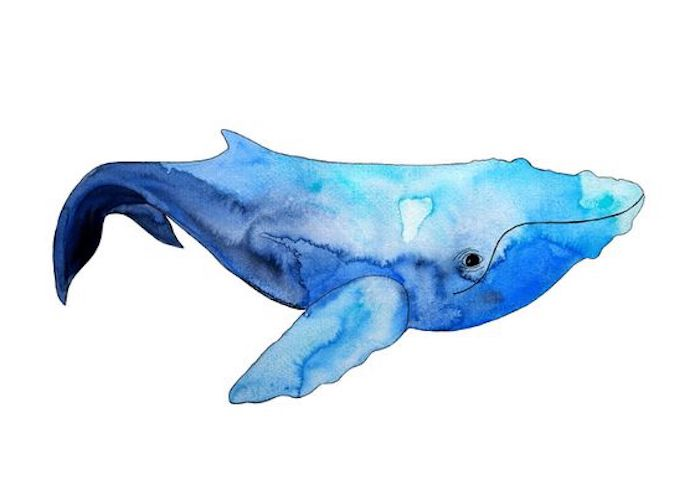 blue and purple whale drawing, white background, tattoo designs for men