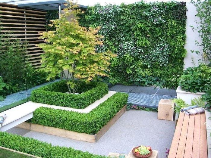 small levelled hedges, crawling plant on the wall, landscape edging ideas, small trees, flower beds
