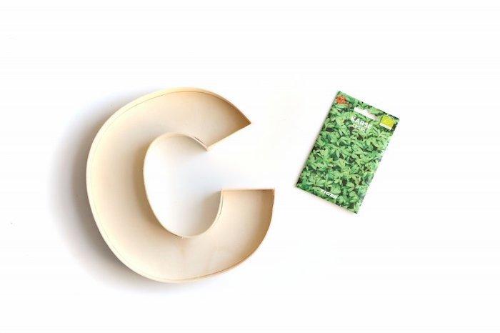 wooden c letter, cress seeds, landscape border ideas