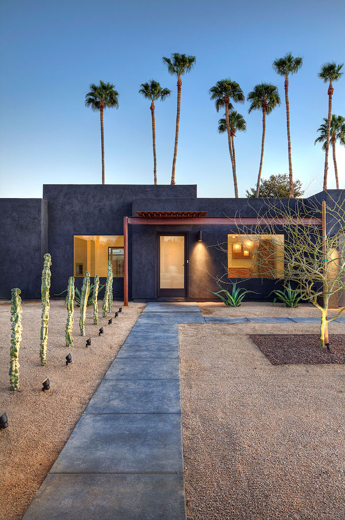 patch of sand with stone tiles for pathway, different types of cactuses, tall palm trees, landscaping ideas