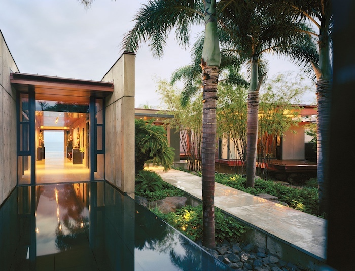 glass tiled entryway, tall palm trees, landscaping ideas for front of house, small patches of bushes