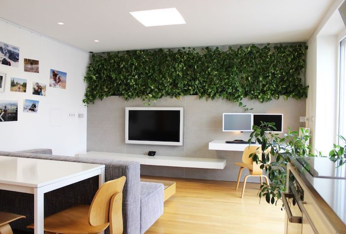 greenery installation hanging from the ceiling, living room paint ideas, grey sofa