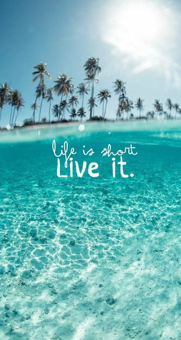 life is short live it, nature iphone wallpaper, palm trees in the background