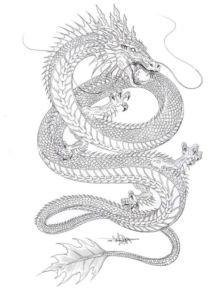 tattoo designs for women, black and white drawing, large s shaped dragon, white background