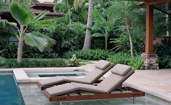 big and small pools, large palm trees, small patches of grass and bushes, rock landscaping ideas