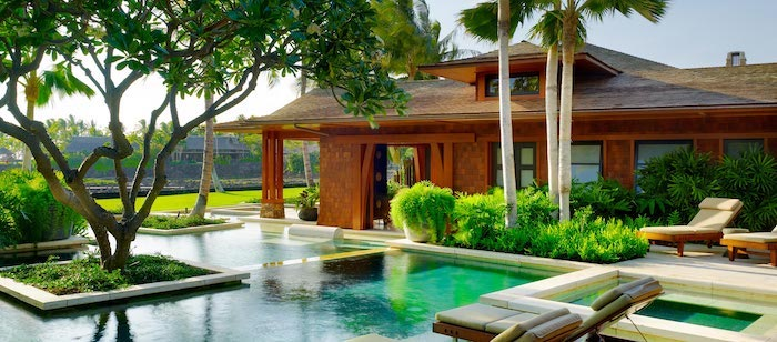 tall palm trees, large pool with patches of grass and trees, backyard landscaping ideas, small green bushes