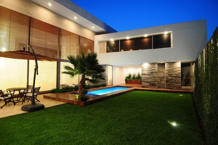 minimalistic house design, small pool, crawling plants on the wall, landscaping ideas for front of house, small palm tree, large grass patch