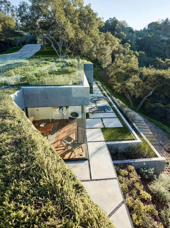 grass patches on the roof, levelled flower beds, desert landscape ideas, tall trees