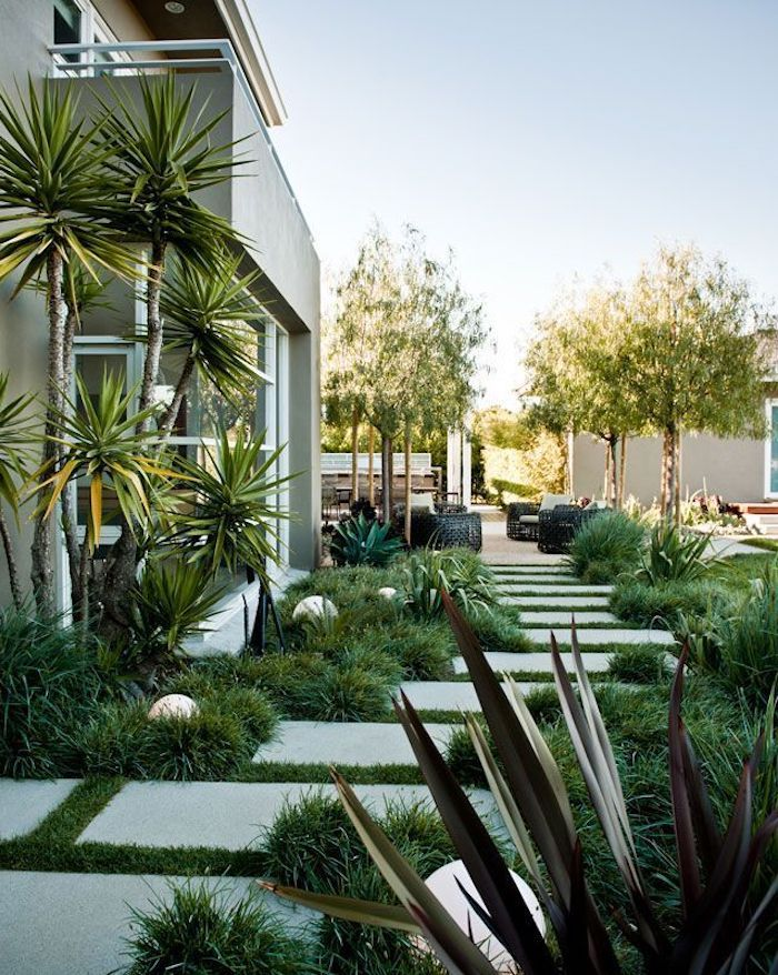stone tiles in the grass pathway, pool landscaping ideas, small bushes and palm trees, round lights