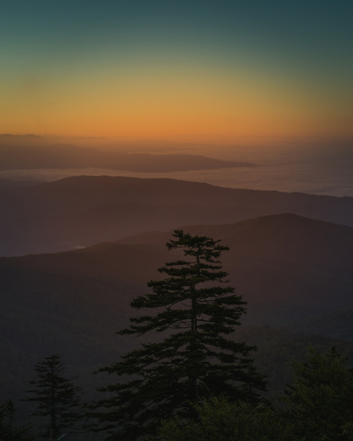 motivational iphone wallpaper, pine trees, black mountains, orange sky at sunset