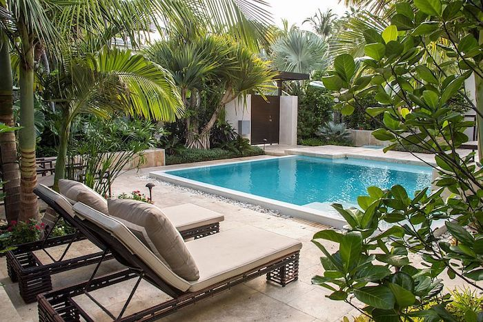 very tall palm trees, backyard landscaping ideas, large square pool, patches of grass and small bushes