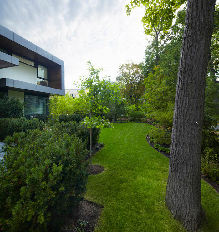 large grass patch, hillside landscaping ideas, tall trees, small hedges, flower beds with bushes