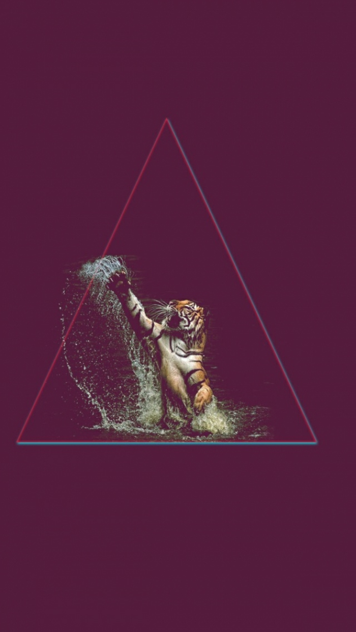 purple background, awesome iphone wallpapers, tiger in water and in a triangle
