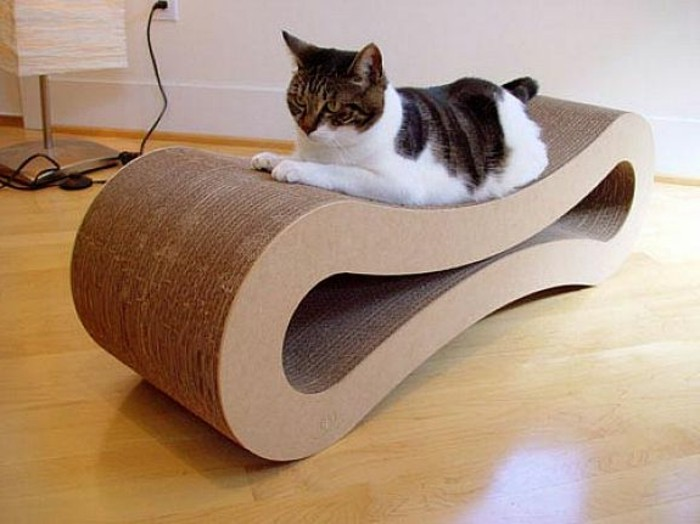 cardboard shelves, cat sitting on a cardboard bed, minimalist modern design, wooden floor