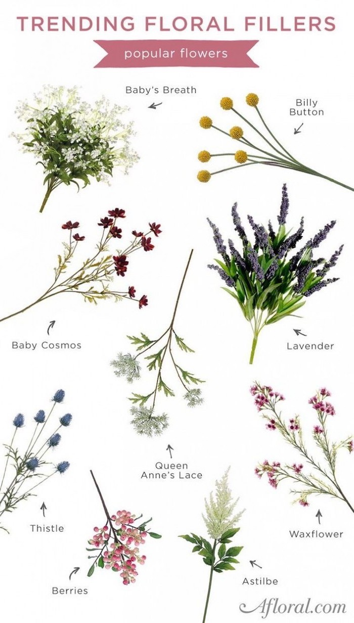 trending floral fillers, floral centerpieces, different flowers chart, on a white background