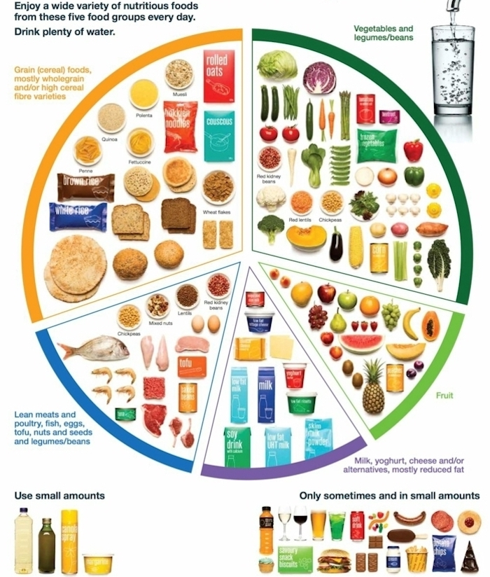 balanced meal, chart of types of food, appropriate foods to eat, healthy food chart, white background