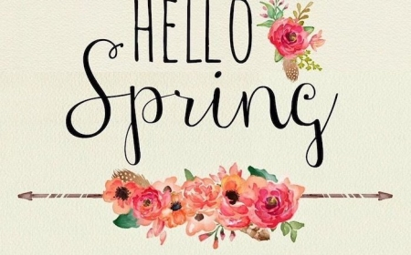1001 Spring Wallpaper Images For Your Phone And Desktop Computer