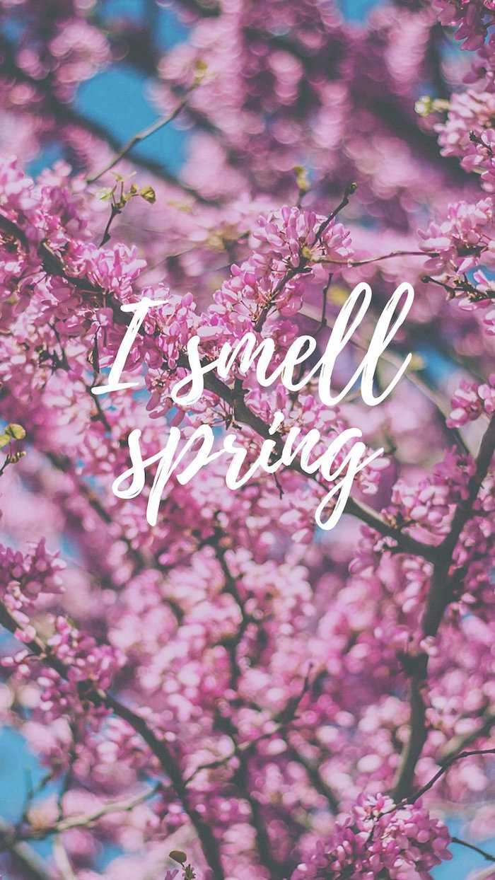 i smell spring quote, phone wallpaper, spring wallpaper, blooming tree in the background