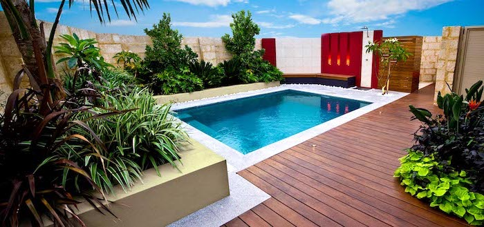 garden patio ideas, small pool, surrounded by wooden floor, planted trees palm trees and bushes arround