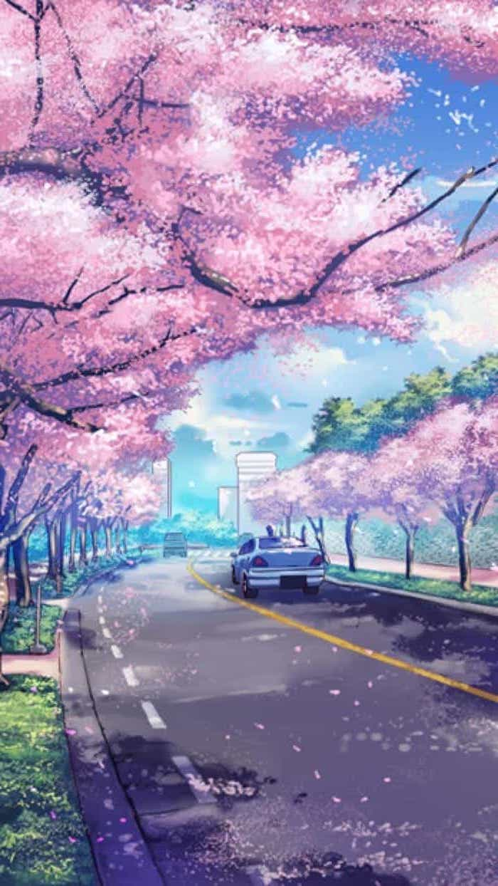 painting of a road, with pink blooming trees along, spring desktop wallpaper, phone