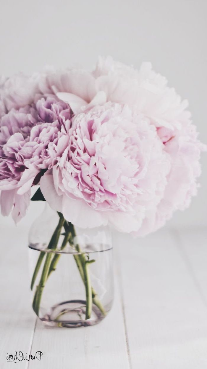 bouquet of pink peonies, happy spring images, phone wallpaper, bouquet in a glass vase, on a wooden table