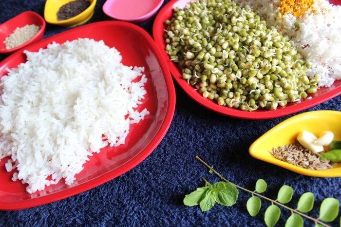 white rice, in a white plate, herbs on the side, blue furry cover, healthy eating meal plan, small colourful bowls
