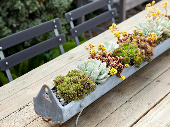 succulents centerpiece, pot made out of metal, rustic style, flower arrangement pictures, on a wooden table