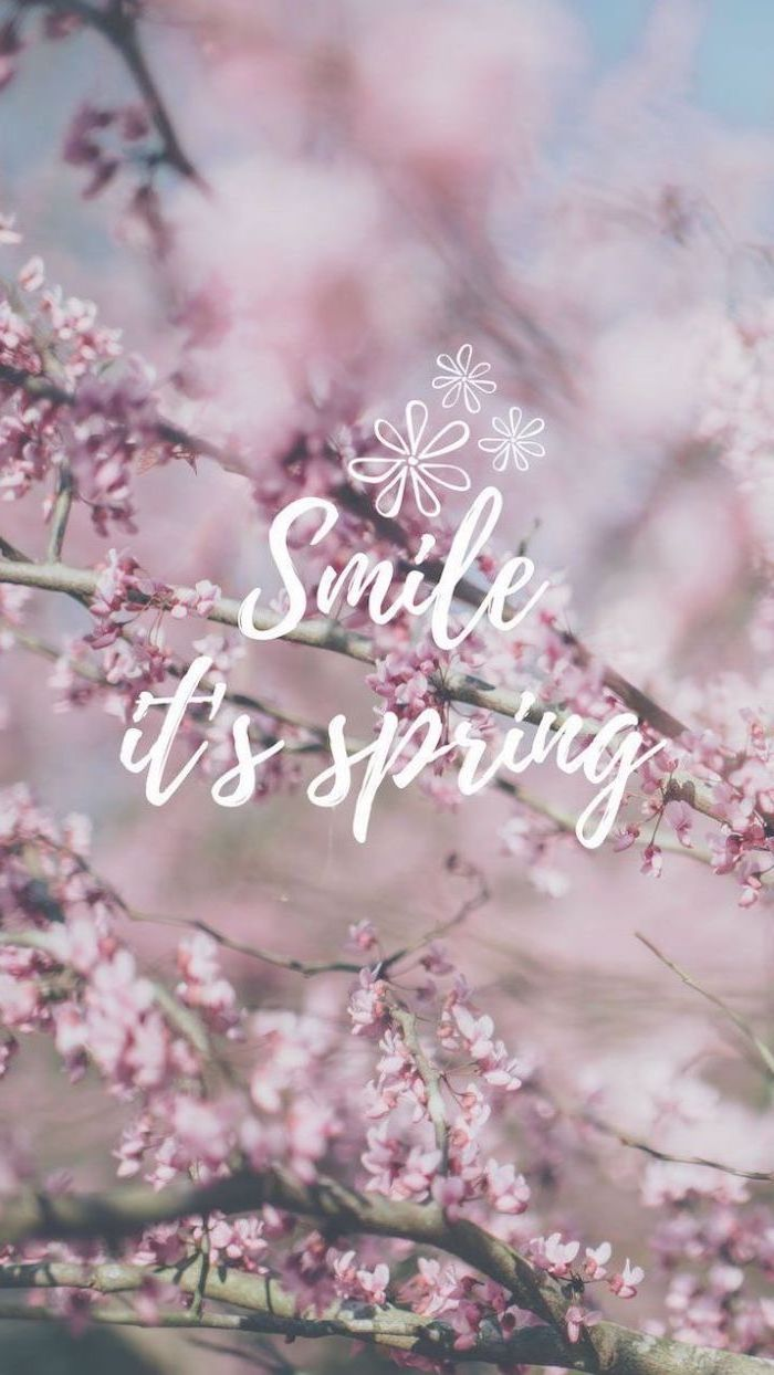 smile it's spring quote, blooming trees in the background, spring flowers wallpaper, phone wallpaper