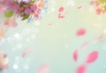 Spring wallpaper – a 100 beautiful images to decorate your phone or computer with