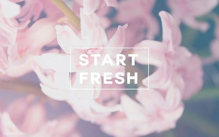 start fresh quote, spring cover photo, pink hyacinth flower, in the background