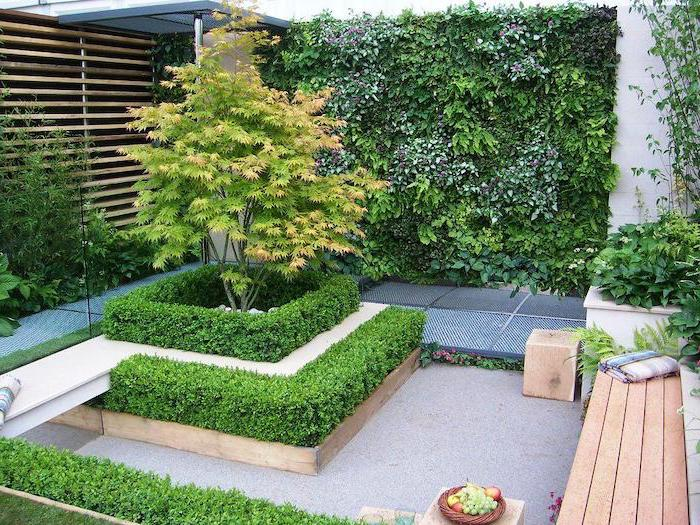 wooden bench with a blanket, short hedges around a tree, small patio ideas, planted trees and bushes