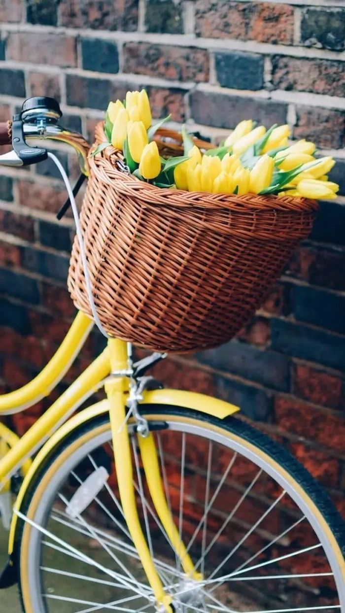spring wallpaper for desktop, yellow bike, yellow tulips, in a wooden basket, leaning on a brick wall