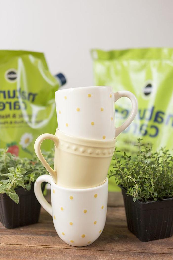 housewarming gift ideas, coffee mugs, herb garden, diy tutorial, step by step