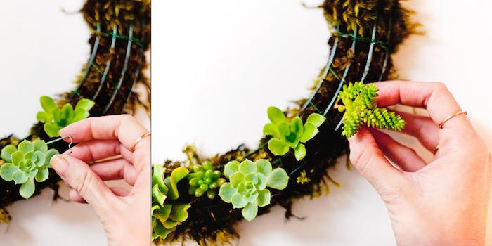 diy tutorial, step by step, housewarming gifts for men, diy succulents wreath