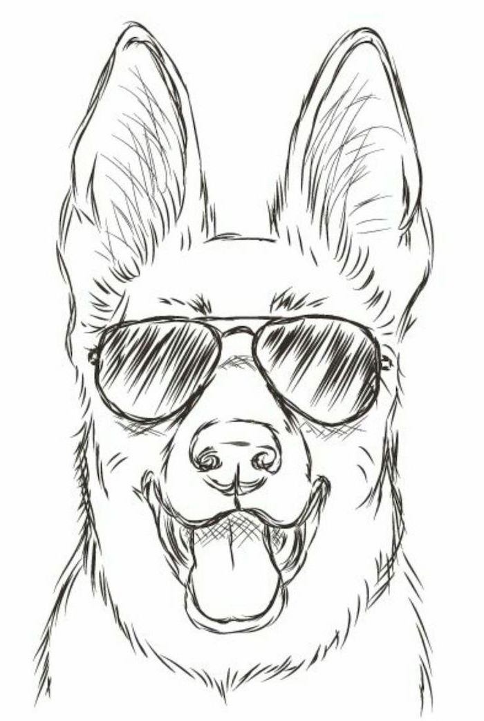 dog with sunglasses, easy drawing tutorials, black and white, pencil sketch, white background