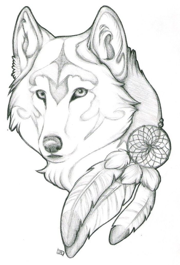 large wolf head, with a dreamcatcher, cute easy things to draw, black and white, pencil sketch