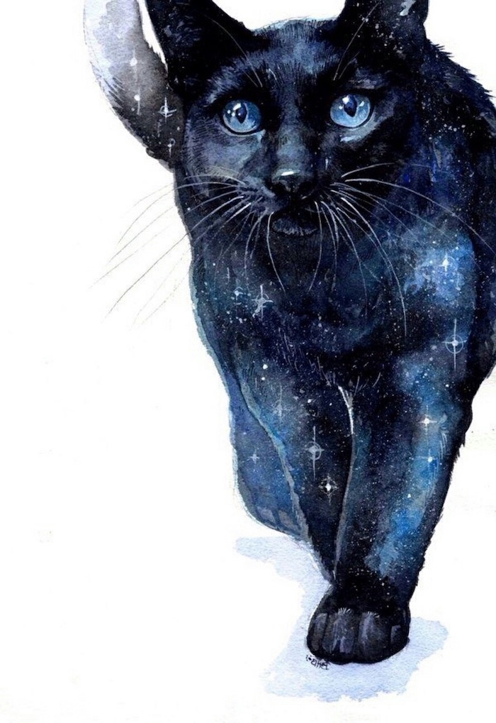 galaxy cat, with blue eyes, colourful drawing, easy things to draw step by step, white background