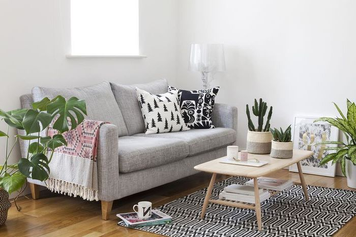 grey sofa, wooden coffee table, living room furniture layout, white walls, potted plants, wooden floor