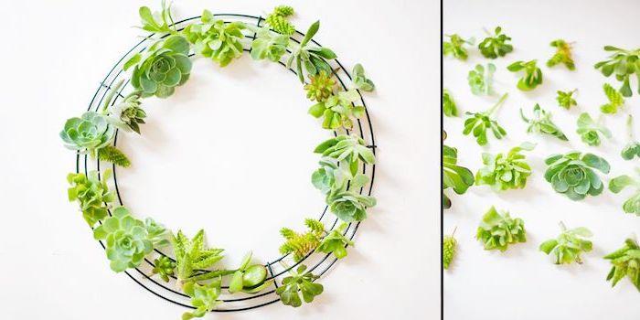 housewarming gifts for men, diy succulents wreath, step by step, diy tutorial