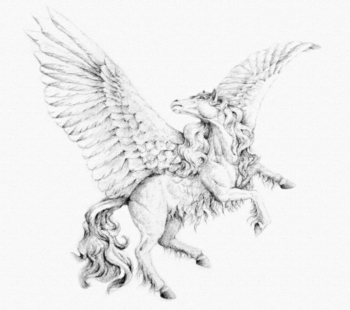pegasus flying, black and white, how to draw hair, pencil sketch