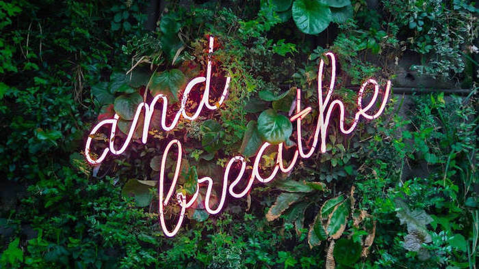 and breathe neon sign amongst greenery pink background tumblr
