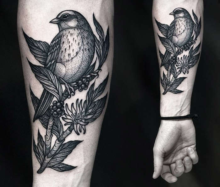 bird on a tree branch, black background, side by side photos, forearm tattoos for men