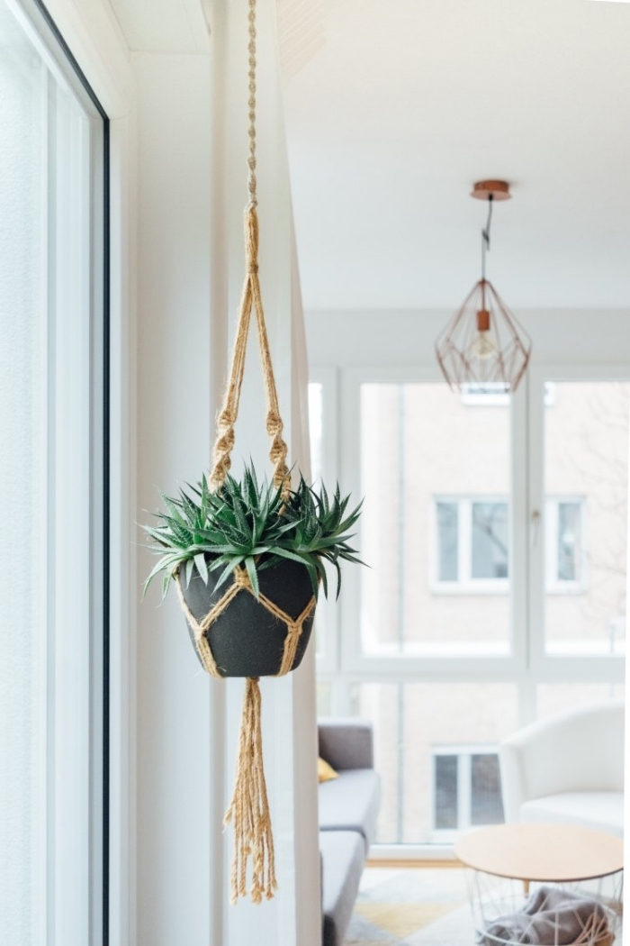 potted plant, plant hanger, free macrame patterns, white walls, large windows