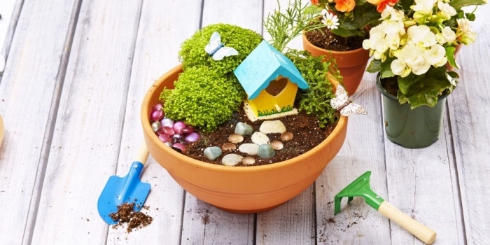 ceramic pots, flowers inside, rocks and a tree house, school themes, small gardening tools