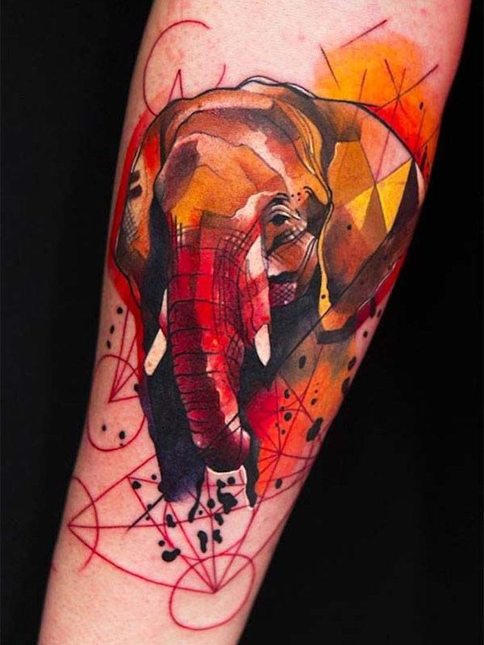 black background, chest tattoos for women, watercolour elephant, forearm tattoo